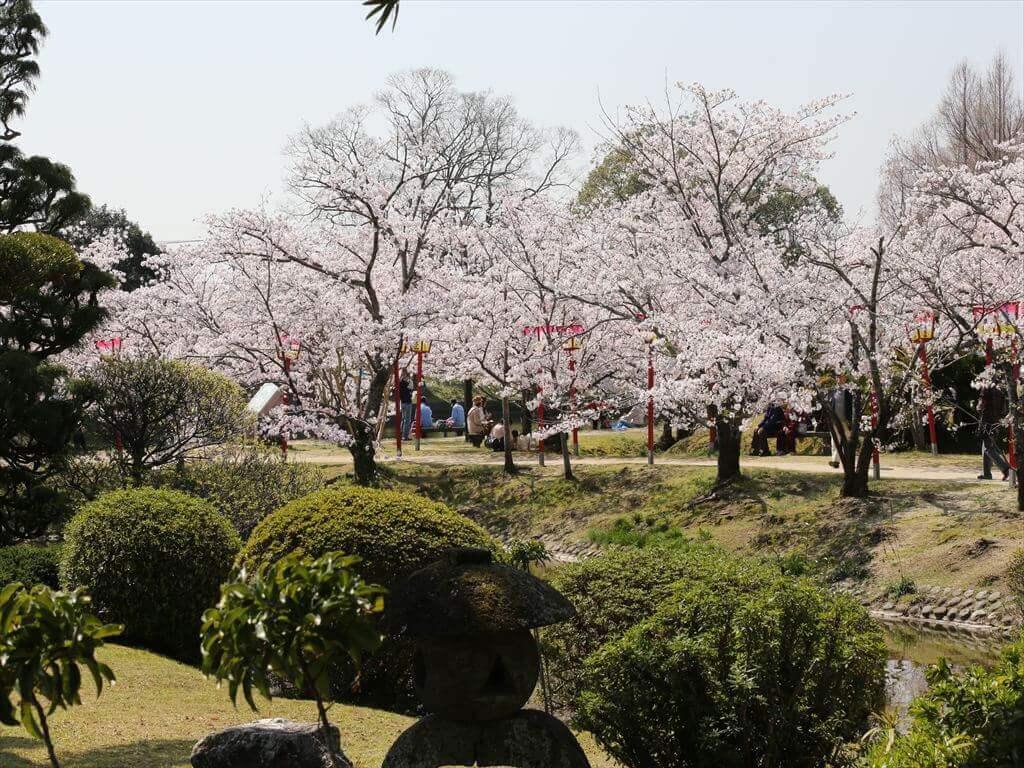 佐賀県小城市のふるさと納税をまとめてみた