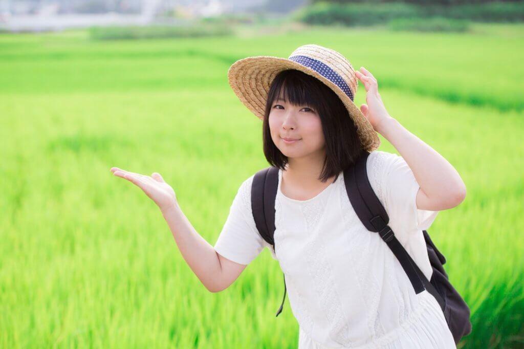 返礼品で選べるお米にはブランド米が多数!