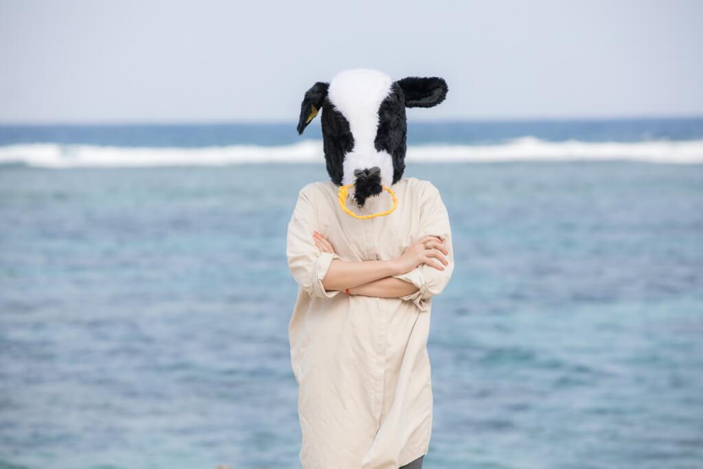 【徹底調査】ふるさと納税でもらえるブランド牛をまとめてみた